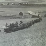 Threshing Wheat in Seltice,1899